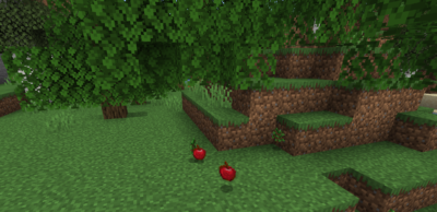 オークの苗木を育ててリンゴを入手する
