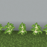 【マイクラ(JE)】シラカバの苗木の入手方法と4つの使い道を解説(あかまつんのマインクラフト)