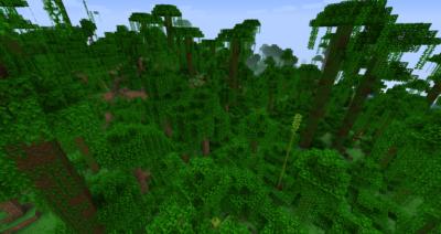 ジャングルの葉の入手方法