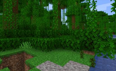 ジャングルの苗木を育ててジャングルの苗木を入手する
