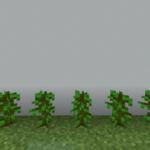 【マイクラ(JE)】ジャングルの苗木の入手方法と4つの使い道を解説(あかまつんのマインクラフト)