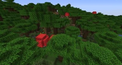 ダークオークの苗木の入手方法