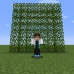 【マイクラ(JE)】オークの葉の入手方法と使い道を解説(あかまつんのマインクラフト)