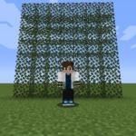 【マイクラ(JE)】シラカバの葉の入手方法と使い道を解説(あかまつんのマインクラフト)