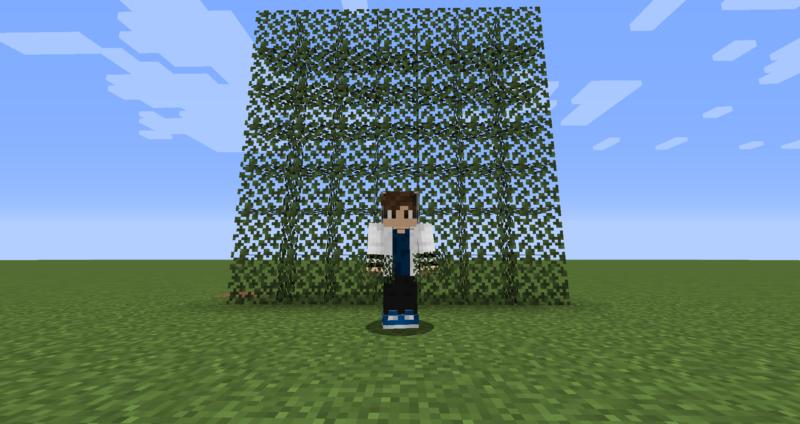 【マイクラ(JE)】シラカバの葉の入手方法と使い道を解説(もさもさのマインクラフト)