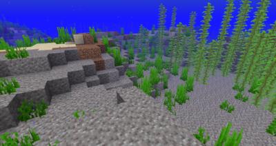 海草の入手方法