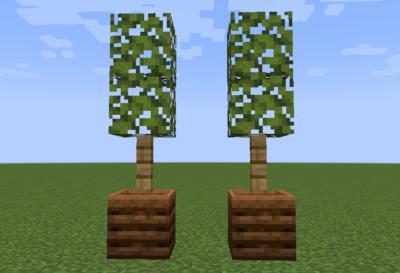 ツヅジの葉の使い道