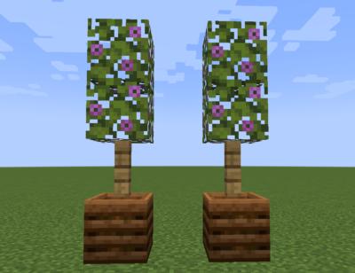 開花したツヅジの葉の使い道