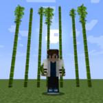 【マイクラ(JE)】竹の入手方法と4つの使い道を解説(あかまつんのマインクラフト)