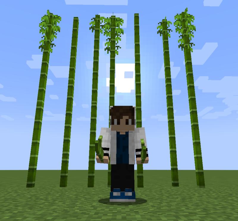 【マイクラ(JE)】竹の入手方法と4つの使い道を解説(もさもさのマインクラフト)